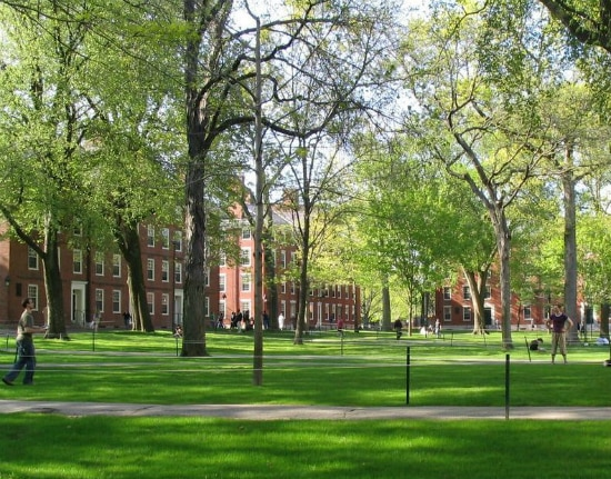 Harvard Yard e os Hollis, Stoughton e Holworthy Halls. Foto: Mancala, via Wikimedia Commons
